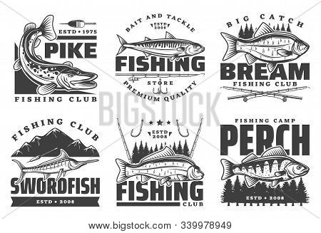 Fishing Club Badges, Fisherman Summer Camp And Big Fish Catch Tours. Vector Fishing Tournament Badge