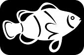 Logo of a white fish image on black background Vector illustration poster