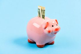 Money Saving. Banking Account. Earn Money Salary. Money Budget Planning. Piggy Bank Pink Pig Stuffed