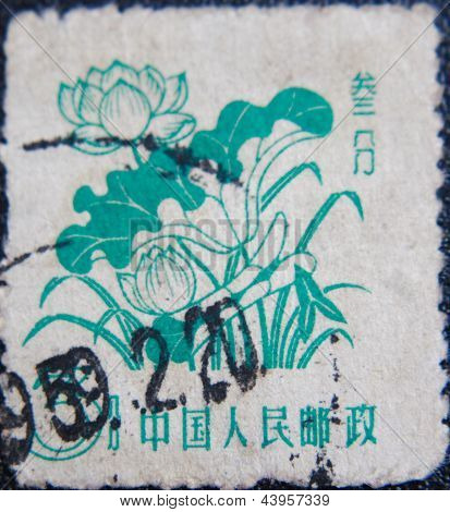 CHINA - CIRCA 1959: stamp printed by China at 1958 shows  few lotos