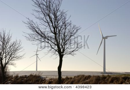 Wind Turbines In Picardy