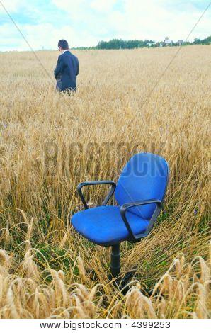 Businessman In Field