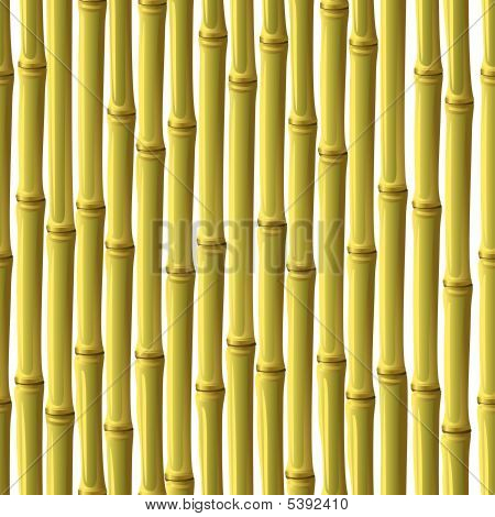 Abstract Bamboo Background.