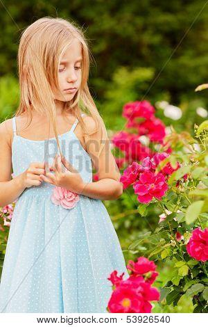 Little girl dressed in polka-dot gown look at rosebush in summer park