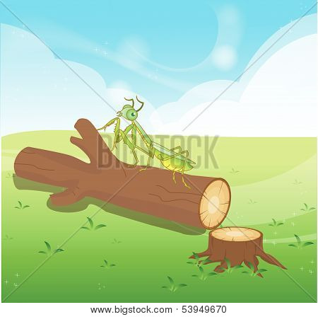 Wooden Logs Isolated vector objects Praying mantis grasshopper art and illustration poster