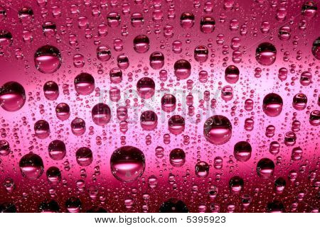 macro of pink water drops