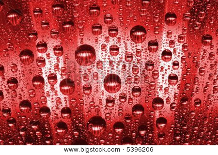 macro of red water drops