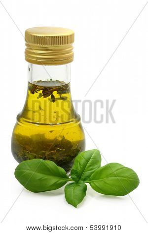 olive oil whit basil in bottle and fresh basil isolated on white background