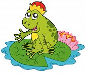 Frog prince on green water lily - vector illustration. poster
