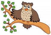 Owl sitting on leafy branch - vector illustration. poster