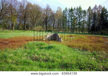 View on shooting range