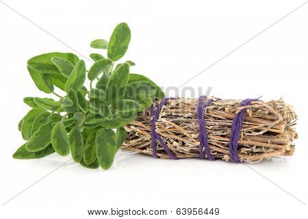 Smudge stick with fresh sage leaf sprigs over white background.