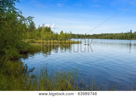 Landscape With Lake In  Sunny Day,finland