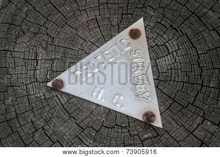 A metal geodetic survey sign is nailed to a tree trunk in North Carolina poster