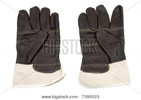 Gloves Of Protection