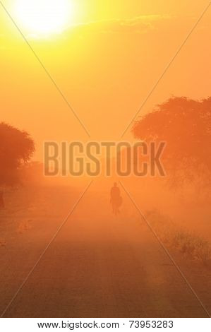 Golden Bicycle - Transportation Background - Riding into the Sun