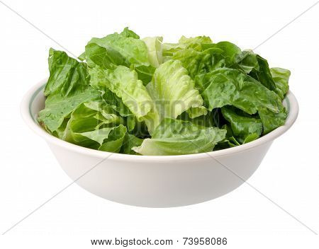 Romaine Salad Bowl Isolated