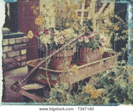 Rusty Old Wagon Becomes A Becoming Floral Display