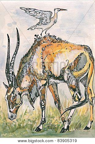 Antelope and bird