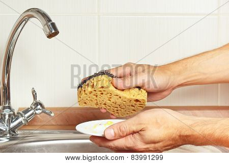 Hands with sponge and dirty saucer over the sink in kitchen