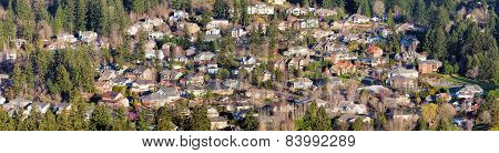Residential Homes In North American Suburbs