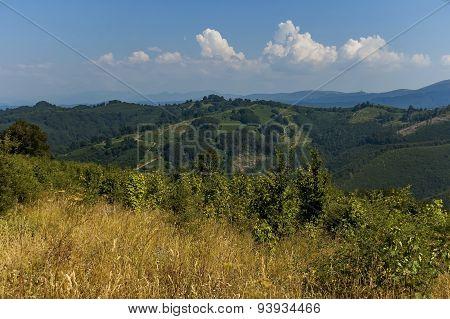 Landscape of Stara planina or Balkan mountain area