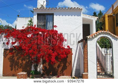 Spanish villa with Bougainvillea, Spain.