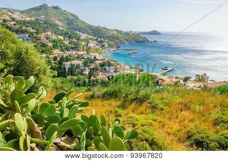 Cactuses and bay of Greek houses on coast, Greece