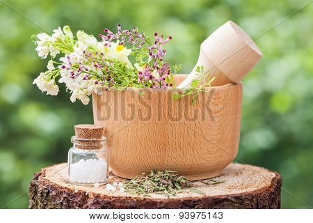 Mortar With Healing Herbs And Bottle Of Homeopathy Globules On Wooden Stump