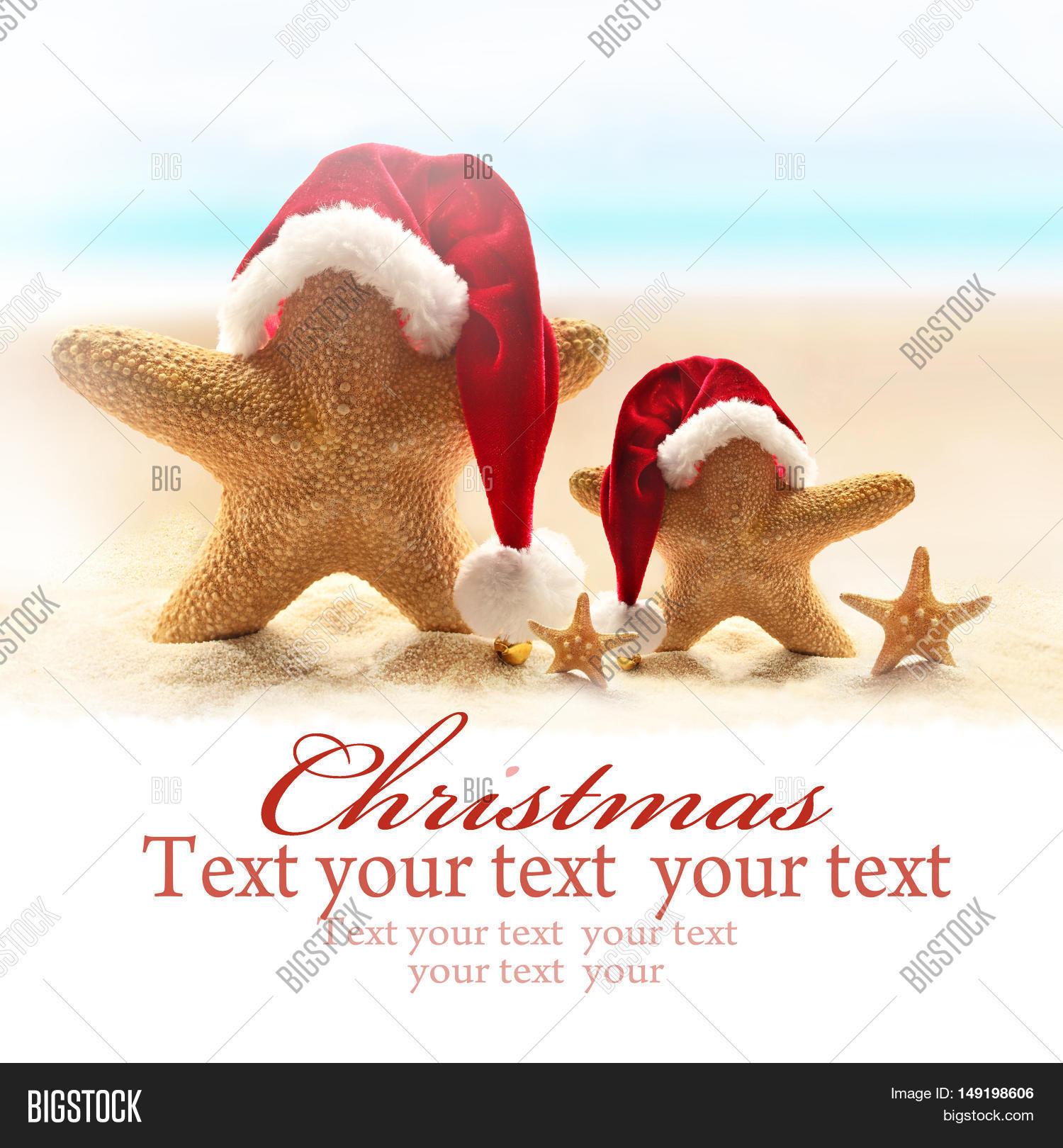 9664012dfb64b Family of starfish on summer beach and santa hat. Merry Christmas