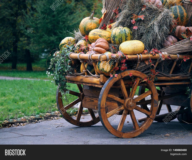 Pumpkins Sheaves Hay Image Photo Free Trial Bigstock