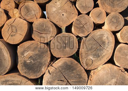 A frontal view of wooden logs tacked one on top of the other.
