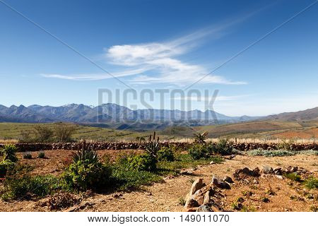 The Garden At The Entrance Of The Swartberg Pass