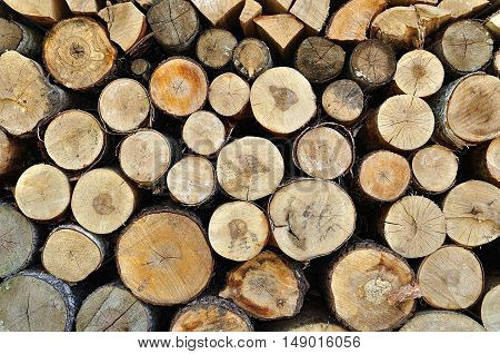 Natural wooden background - closeup of chopped firewood. Firewood stacked and prepared for winter. Stacked tree wood logs - natural wooden background