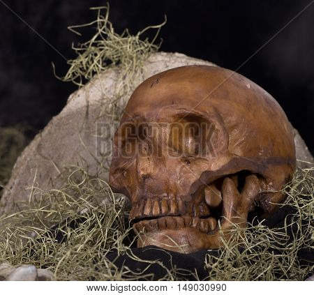 Scary human skull laying by a tombstone