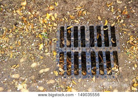 Brown leaves around a dry rain water drain grille - drought concept