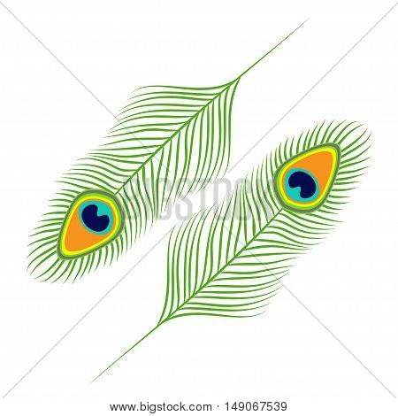 Peacock feather set collection. Exotic tropical bird colorful tail. Isolated. White background. Flat design. Vector illustration