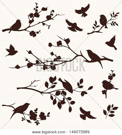 Spring set of bird and floral twig silhouettes. Blossoming apple and cherry tree branches