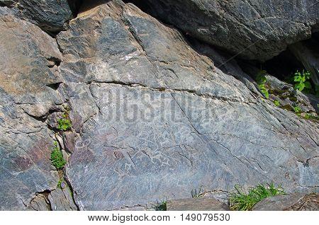 Petroglyphs. River Kucherla Kuylyu grotto Altai mountains.