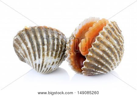 Beetroot fresh cockles seafood on white background