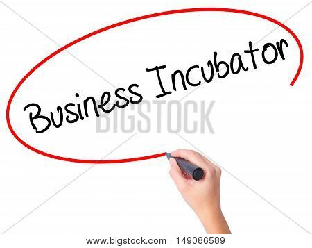 Women Hand Writing Business Incubator With Black Marker On Visual Screen