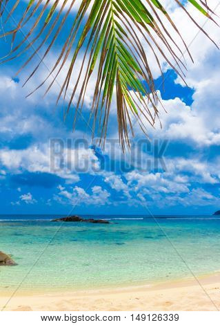 Overhanging Exotic Sea