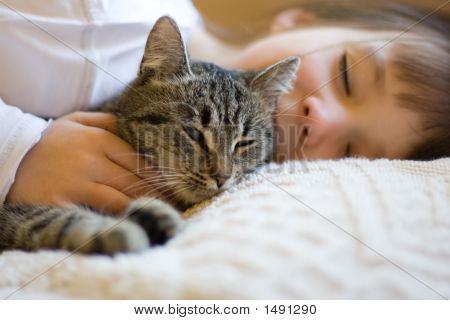Cute Girl Napping With Cat