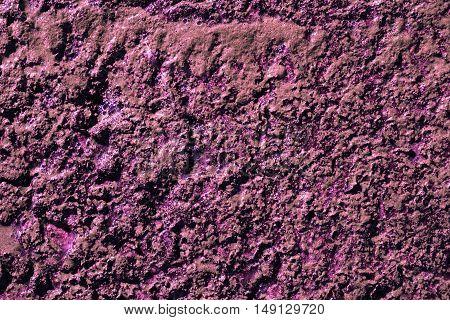 Purple swamp surface macro natural texture photo