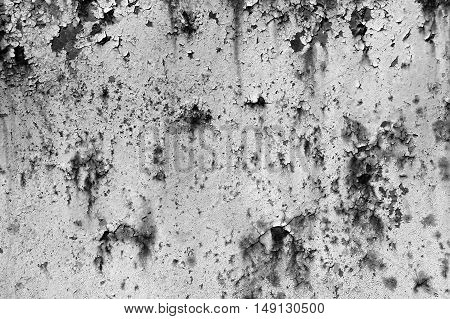 Old Painted Grey Rusty Wall Detailed Texture