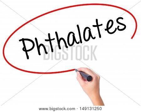 Women Hand Writing  Phthalates  With Black Marker On Visual Screen