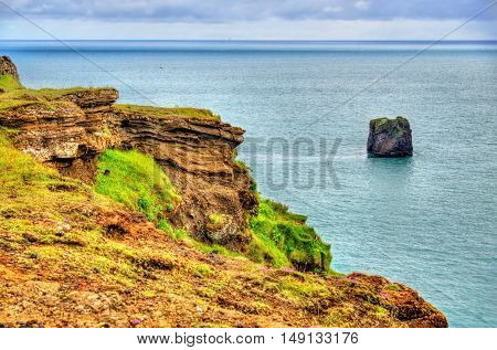 Shore of Dyrholaey Cape in South Iceland