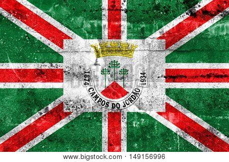 Flag of Municipio de Campos do Jordao Sao Paulo Brazil painted on dirty wall poster