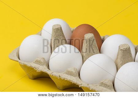 Tolerance concept. Brown egg among white eggs in box on yellow background.