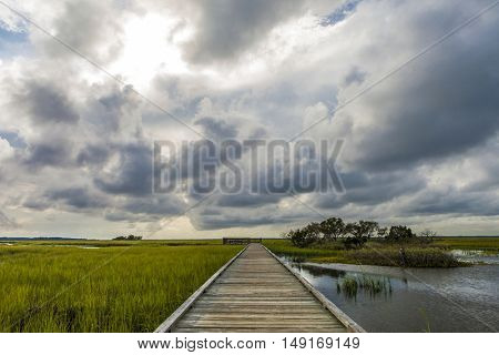 Scenic of the South Carolina lowcountry